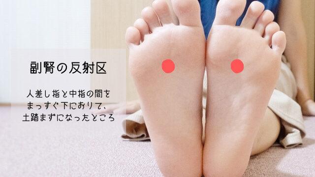 副腎の反射区の場所